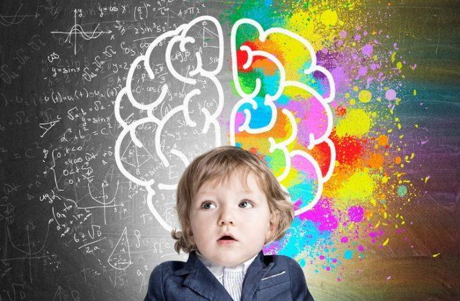 พัฒนาสมองด้วยศิลปะ